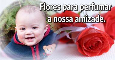 Flores pra perfumar a nossa amizade
