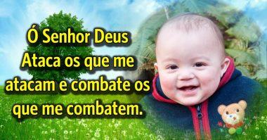 Senhor, combate os que me combatem