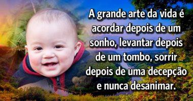 A grande arte da vida é sorrir e nunca desanimar